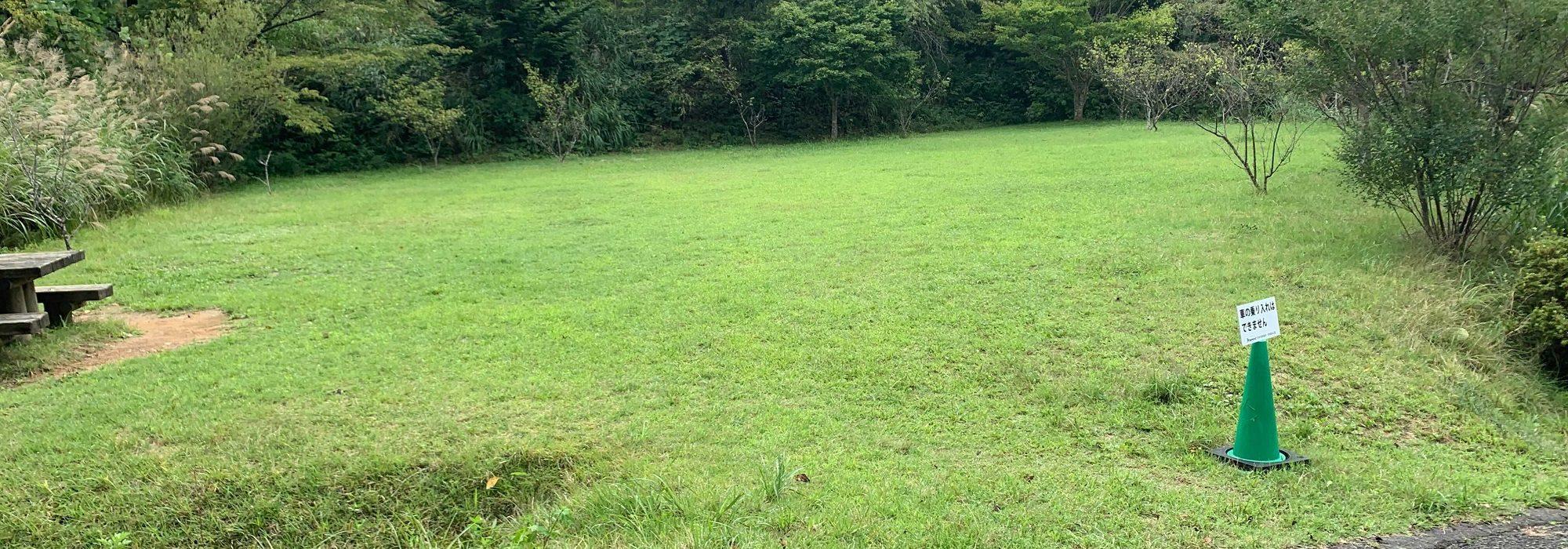 フリーサイトの芝生の管理は行き届いている
