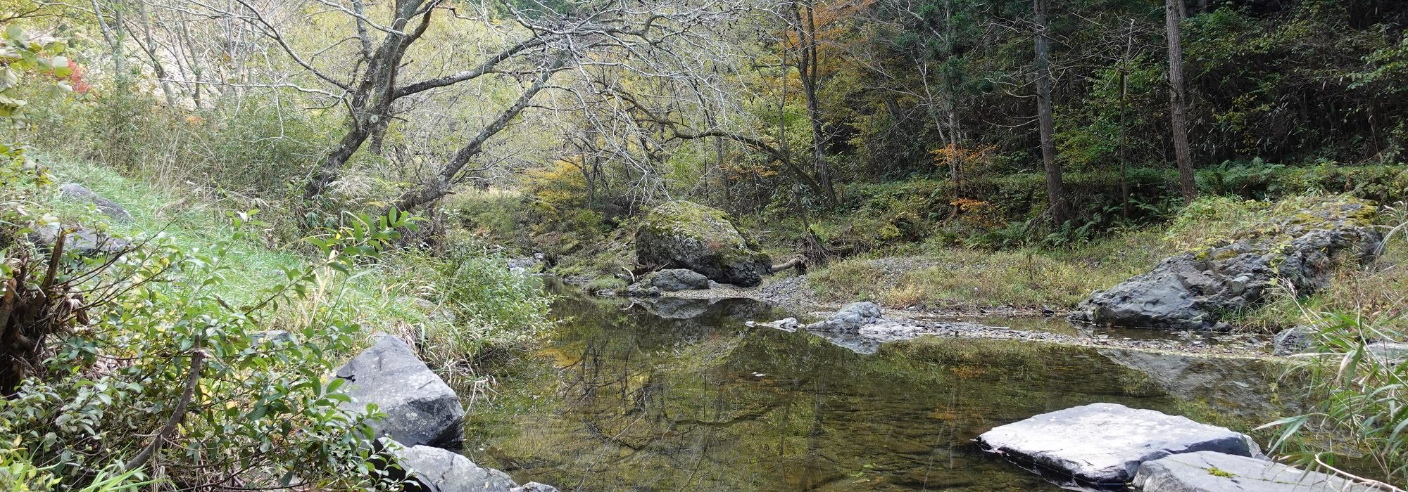 ゆるやかに流れる川の水を静かに眺めるのもオススメ